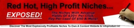 Thumbnail High Profit Niche